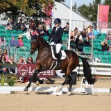 Rock Diva at the LeMieux Dressage National Championships